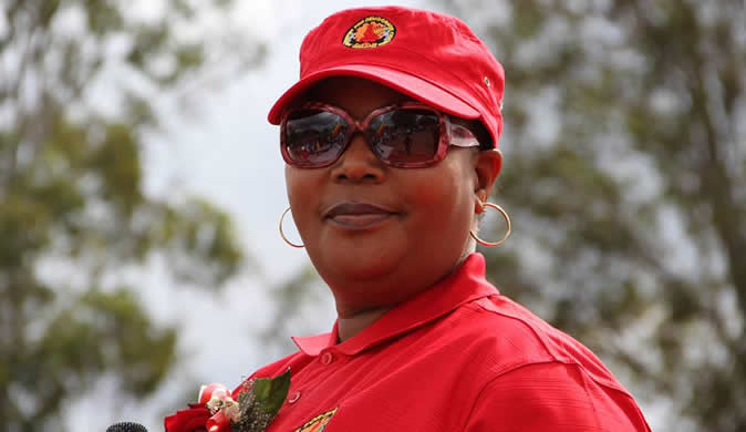 Khupe recalls 9 more MDC Alliance MPs